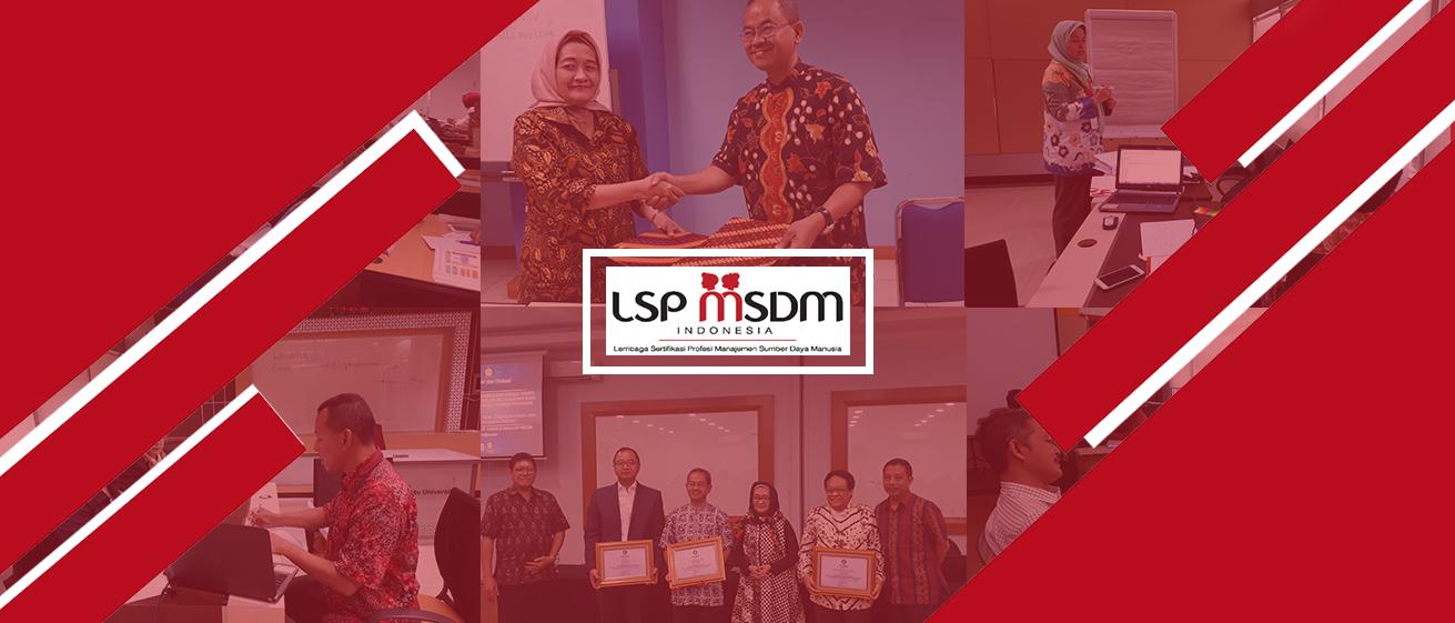 LSP MSDMI